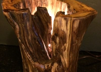 Unique log lamp